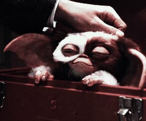 gremlins, black and white, and gif image