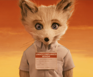 fox, fantastic mr. fox, and fantastic image