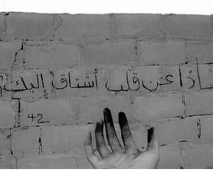 arab, miss, and arabic image