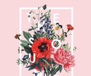 wallpaper, the 1975, and pink image