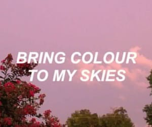 quotes, Lyrics, and pink image