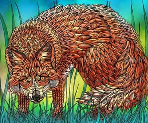 fox adobe photoshop art image