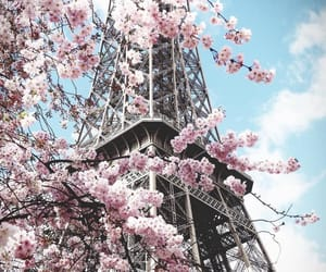 spring, eiffel tower, and paris image