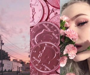 astrology, flowers, and pink image