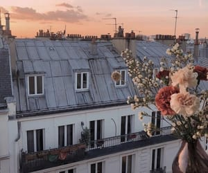 sunset, travel, and flowers image