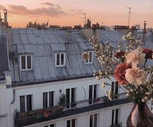 flowers, sunset, and paris image