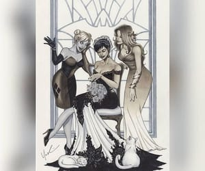 catwoman, DC, and harley quinn image