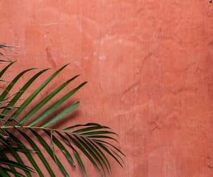 wall and wallpaper image