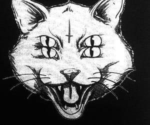 666, Animales, and mascotas image