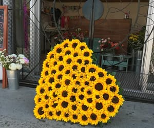 sunflower, flowers, and heart image
