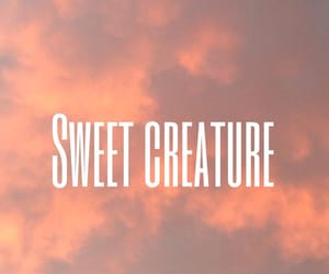 aesthetic, wallpaper, and sweet creature image