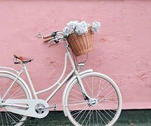 aesthetic, basket, and bicycle image