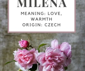 name, warmth, and milena image