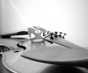 black, music, and strings image