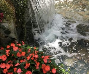 nature, theme, and waterfall image