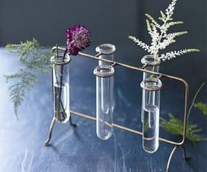 chemistry, unique, and flower rack image