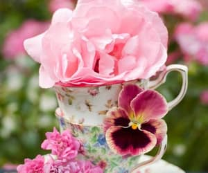 flowers, teatime, and pink image
