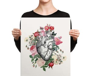 anatomical heart, canvas print, and etsy image