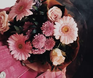 flowers, happiness, and pink image