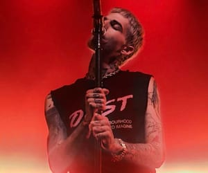 concert, singer, and jesse rutherford image