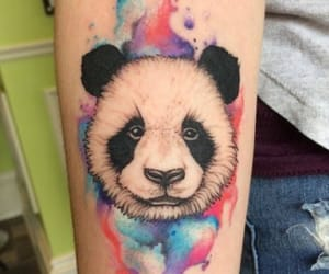 awesome, panda, and colour image