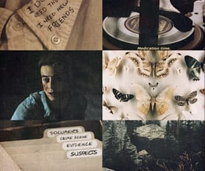 aesthetic, butterfly, and dawn image