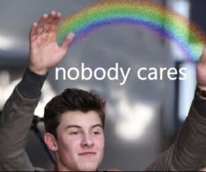 meme, shawn, and shawn mendes image