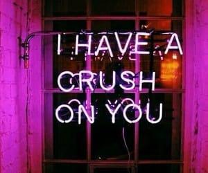 crush, light, and neon image