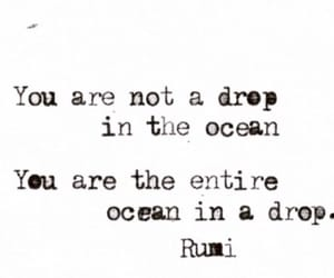 quotes, ocean, and Rumi image