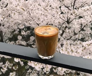 coffee, minimal, and delicious image