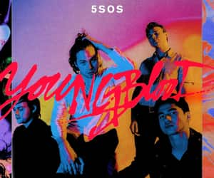 song, catchy, and young blood image