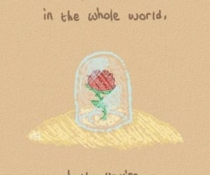 quotes, rose, and the little prince image