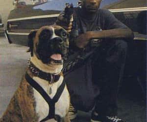 snoop dog image