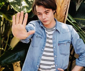 coachella, stranger things, and charlie heaton image
