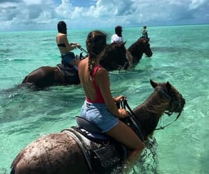 horse, beach, and summer image
