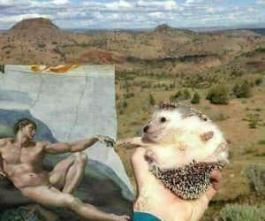 art, animal, and hedgehog image