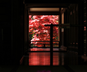 flowers, japan, and house image