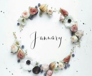 aesthetic, flowers, and january image
