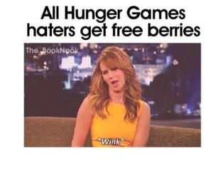 meme, katniss, and hunger games image