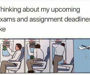 exams, funny, and memes image