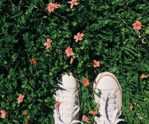 adventure, autumn, and chic image