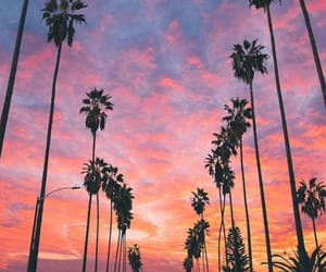 blue, california, and pink image