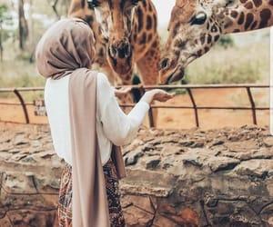 hijab, animal, and fashion image