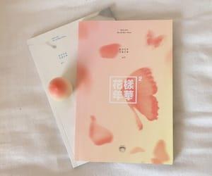 aesthetic, rosa, and album image