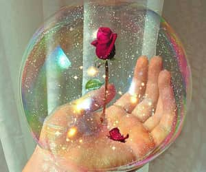 rose, alternative, and bubble image