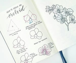 bujo, bullet journal, and bullet journal flowers image