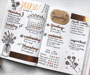 bujo and bullet+journals image