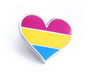 pin, lgbt, and pansexual image