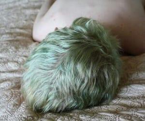 boy, hair, and green image