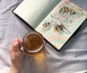 aesthetic, honey, and journal image